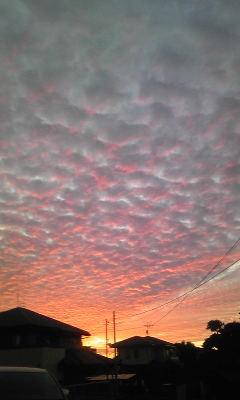 赤く染まったひつじ雲