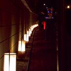 NIKON NIKON D40Xで撮影した風景(花灯路)の写真(画像)