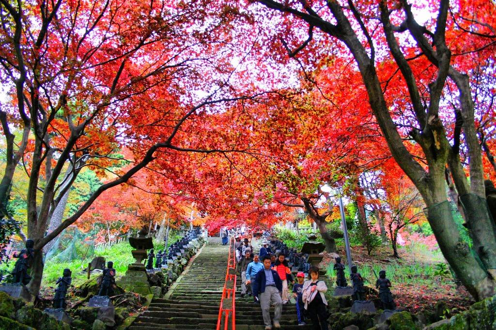 大山寺、散歩。 - Photomatix in use.