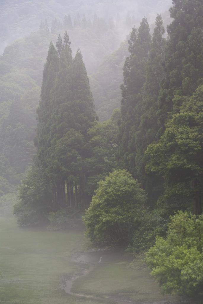 山間の静寂