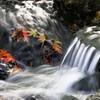 2010紅葉狩り ~川の流れ~