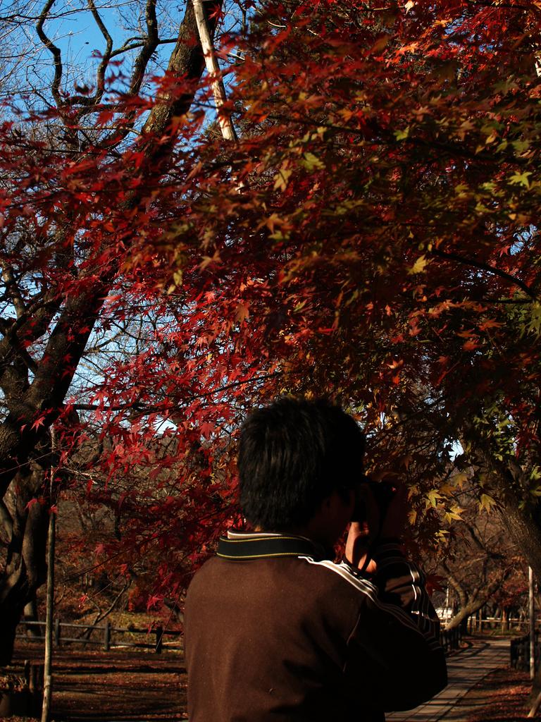 秋、撮る?