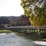 CANON Canon EOS Kiss X2で撮影した風景(川音)の写真(画像)