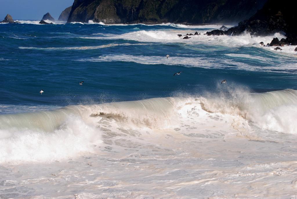 波頭を渡る
