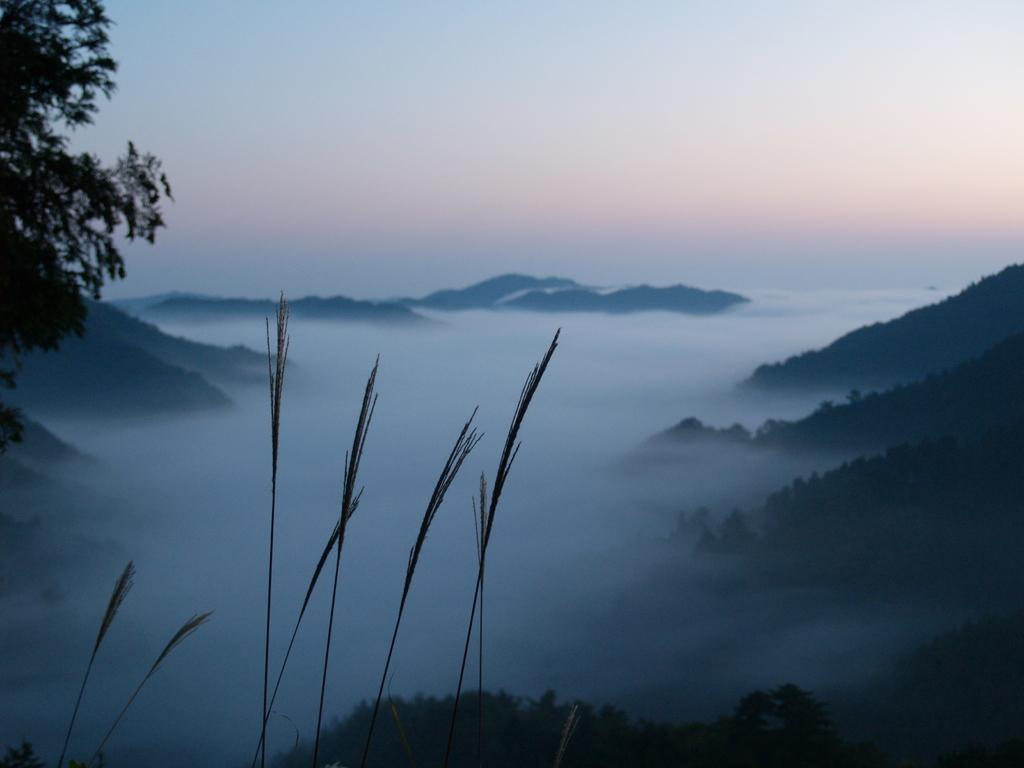 季秋の夜明