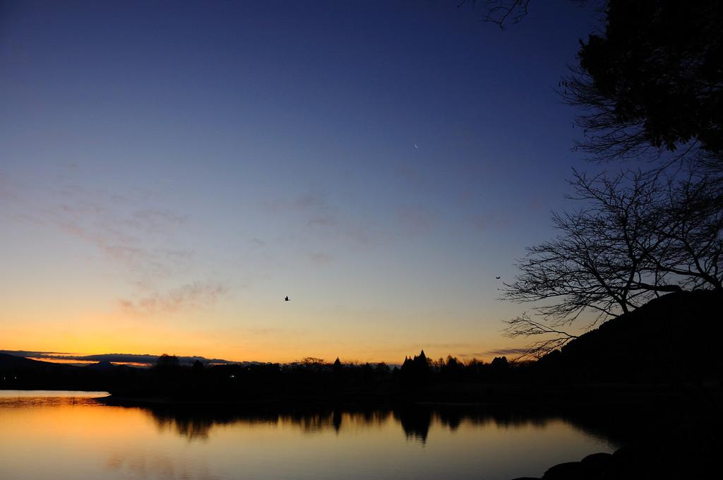 夜明けの薄月