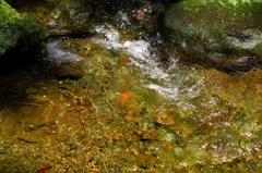 流れる清水