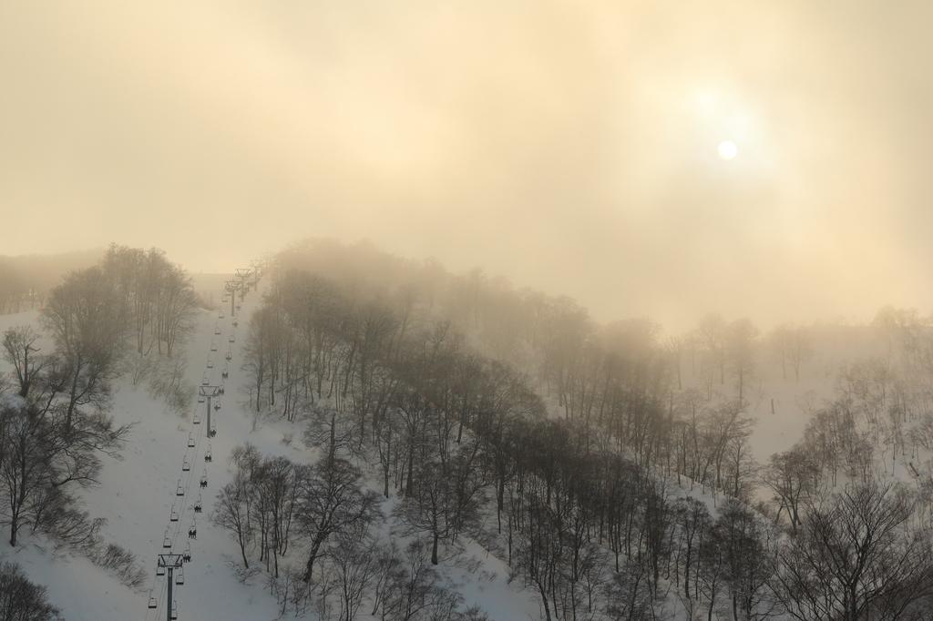 霧の中の光