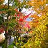 強羅_箱根美術館