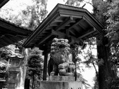 夏 最乗寺