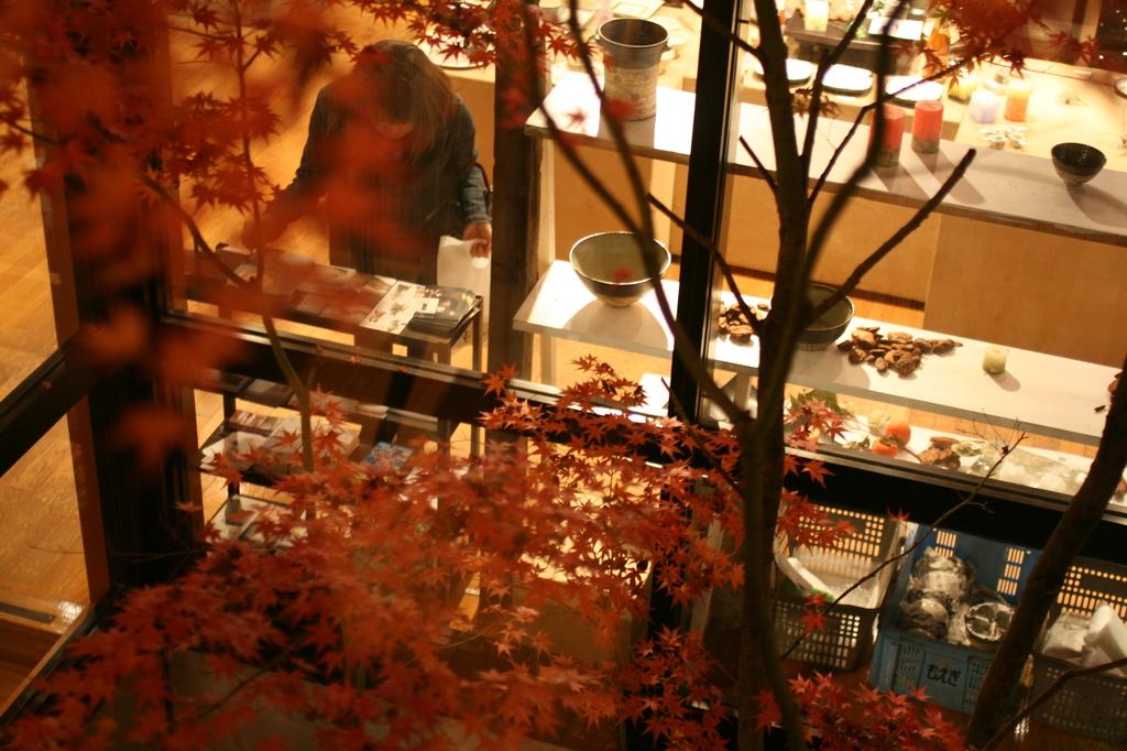 秋の買い物