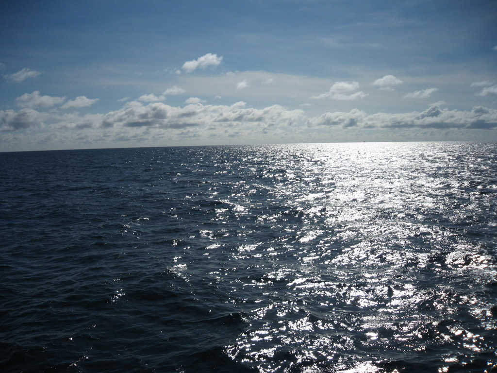 Beautiful sea