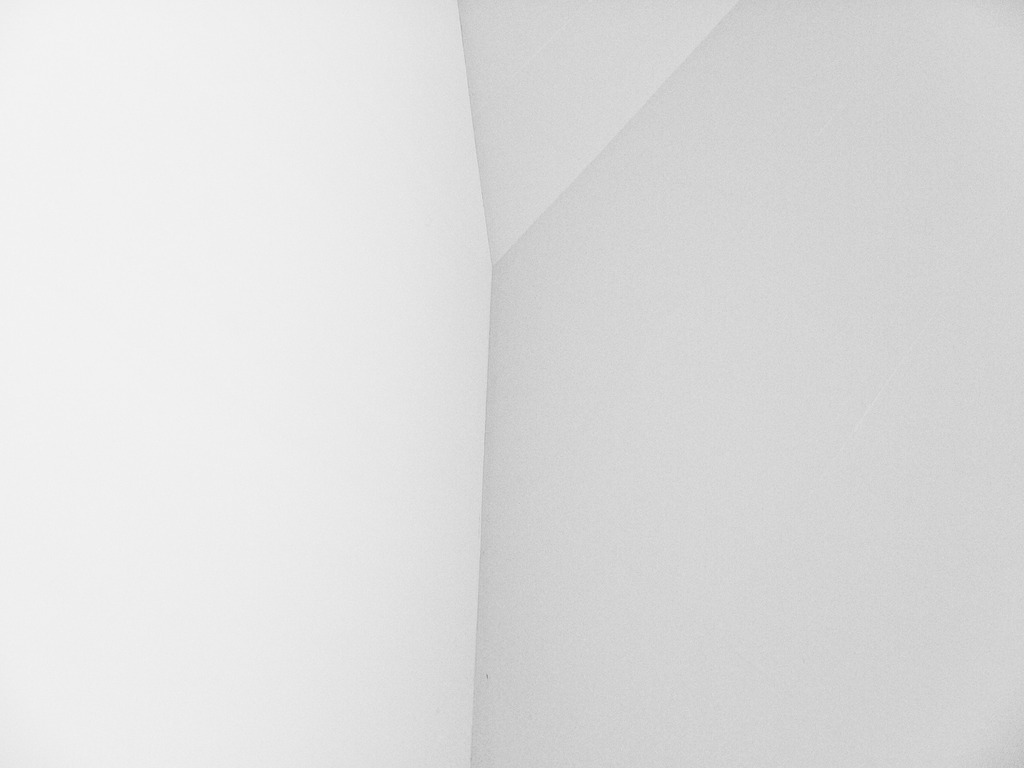 composition-white
