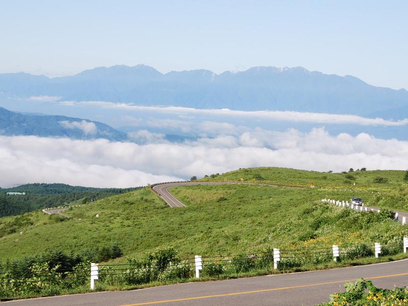 キスゲと雲海