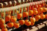整列した美味しそうな秋