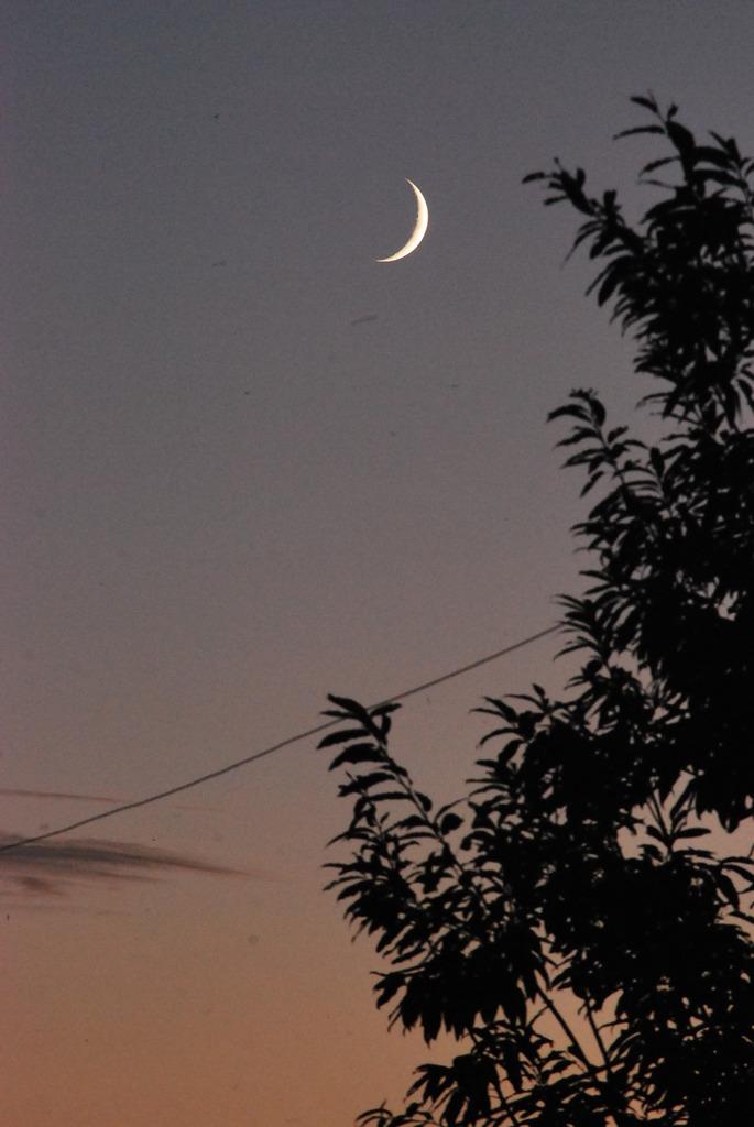 悲しみの月