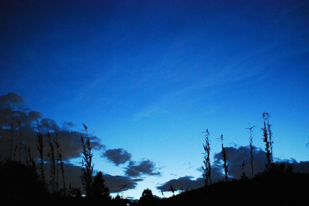 藍に染まる夏の夕暮れ