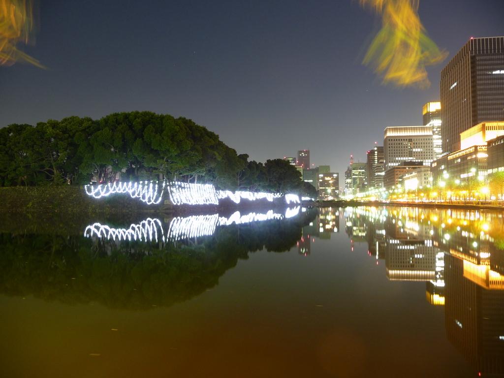 日比谷濠(20081223-0025)