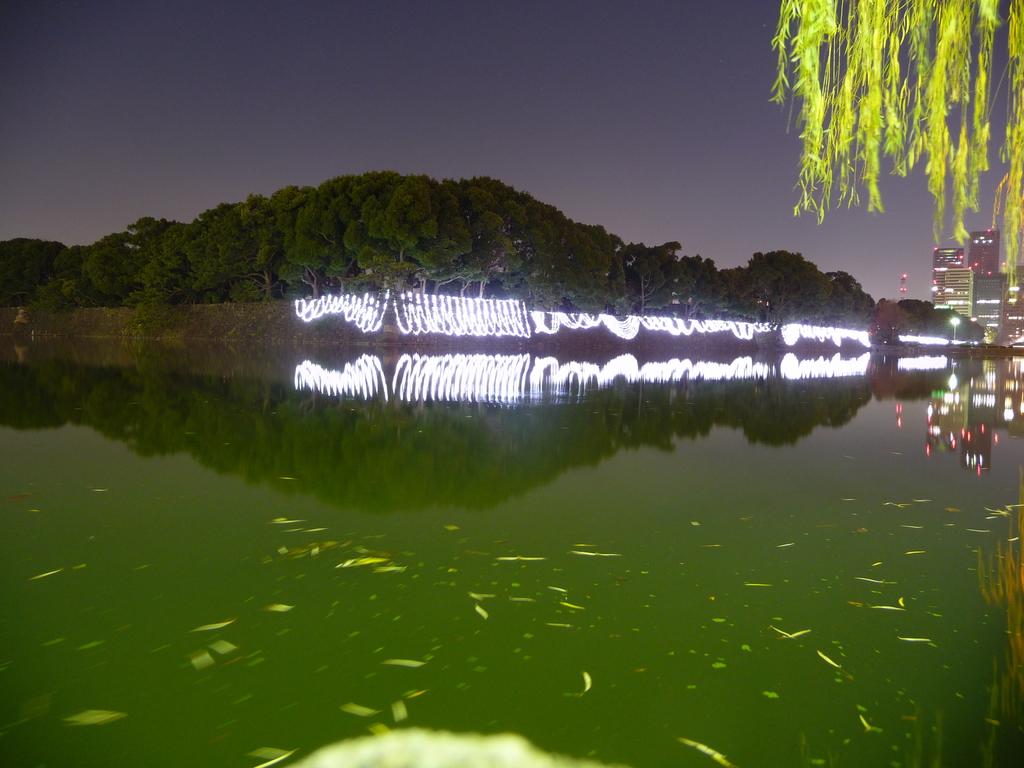 日比谷濠(20081223-0028)