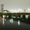 春海鉄道橋(20081031-0021)