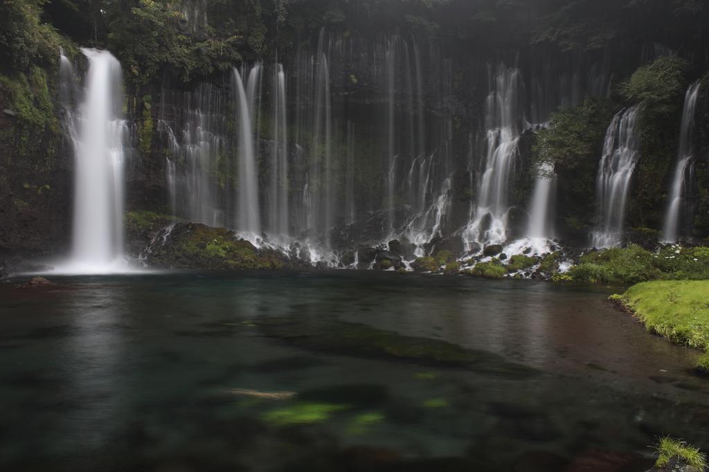 静岡産白糸の滝 皐月鱒と共に