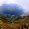 秋の雰囲気【黒菱平】