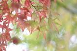 季節の終わり、季節の始まり