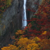 称名滝・秋の装い
