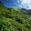 深緑の星生山