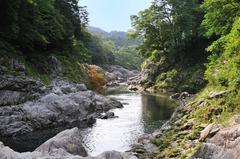 鮎滝から下流(寒狭川)