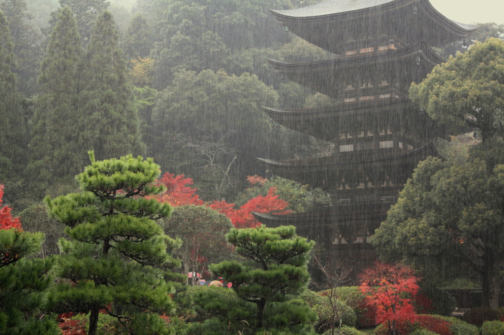 雨でも・・・瑠璃光寺
