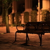 ベンチの孤独。