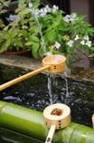 6月の聖水