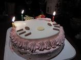 ケーキ(猫型)
