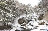 2月の日光(龍頭の滝下)