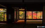 京窓の紅葉④