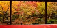 秋の窓 京都②