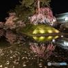 弘前公園2017 追手門前