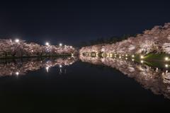 桜 弘前公園 夜②
