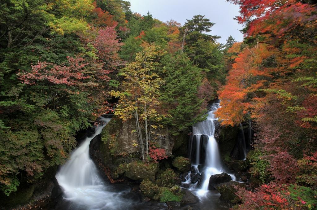 龍頭の滝2009