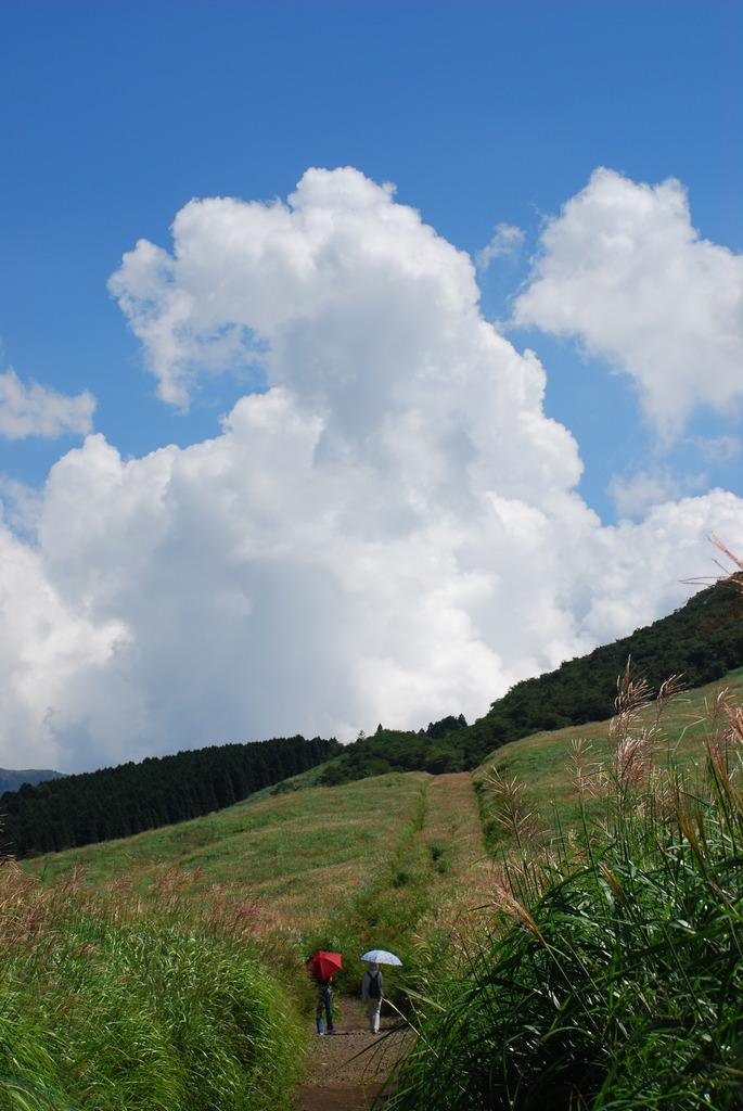 夏、箱根 仙石原