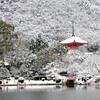 大覚寺大沢池 冬