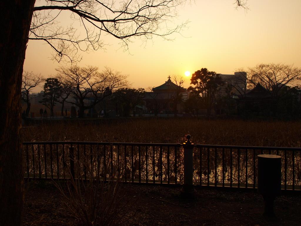 2009_0205上野