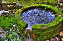 『松風閣庭園』