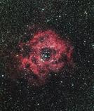 玄関先からバラ星雲