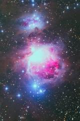 今季初のオリオン大星雲ですが…