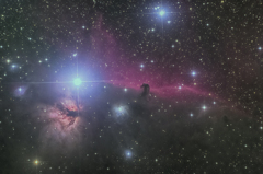 馬頭(罵倒)星雲?