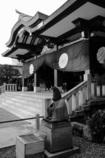 日枝神社8