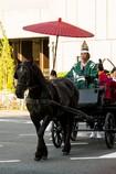 偉いヤツは馬に乗る