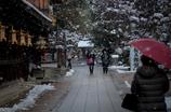 雪と梅。。